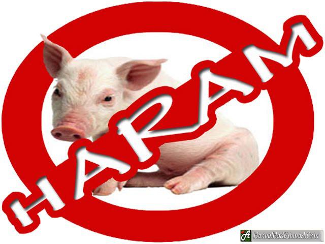 daging babi haram karena, kenapa babi haram tapi diciptakan, kenapa babi dan anjing haram, babi haram dimakan atau disentuh, muhammad dan babi, makan babi dalam isl,am, kenapa babi wujud hikmah babi diharamkan, babi makan apa, hikmah pengharaman anjing, islam makan babi, kebaikan daging babi, ulat dalam daging babi,